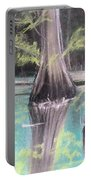 East Texas Cyprus In Pastels Portable Battery Charger