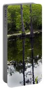 East Texas Cyprus Pond Portable Battery Charger