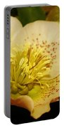 Easter Bloom 2014 Portable Battery Charger