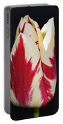 Easter Greetings - Twinkle Tulip Portable Battery Charger