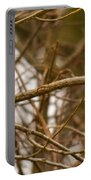 Eastern Bluebird Pair Portable Battery Charger