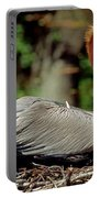 Eastern Brown Pelican Portable Battery Charger