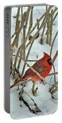 Eastern Cardinal - Cardinalis Cardinalis Portable Battery Charger