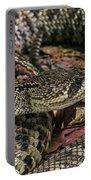 Eastern Diamondback Rattlesnake 1 Portable Battery Charger
