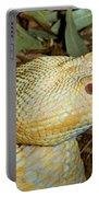 Eastern Diamondback Rattlesnake Albino Portable Battery Charger