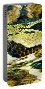 Eastern Diamondback Rattlesnake Portable Battery Charger
