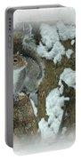 Eastern Gray Squirrel - Sciurus Carolinensis Portable Battery Charger