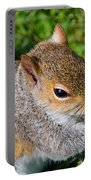 Eastern Grey Squirrel Portable Battery Charger