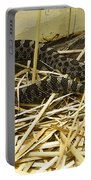Eastern Massasauga Rattlesnake Sistrurus Catenatus Poster Look Portable Battery Charger