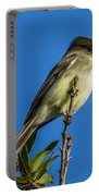Eastern Phoebe Portable Battery Charger
