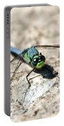 Eastern Pondhawk Portable Battery Charger