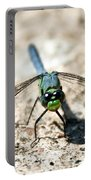 Eastern Pondhawk Front Portable Battery Charger