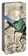 Eastern Pondhawk Side Portable Battery Charger