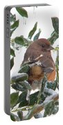 Eastern Rufous-sided Towhee Portable Battery Charger