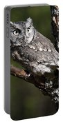 Eastern Screech-owl Otus Asio Portable Battery Charger