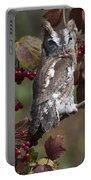 Eastern Screech Owl Red And Gray Phases Portable Battery Charger