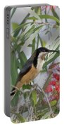 Eastern Spinebill Portable Battery Charger