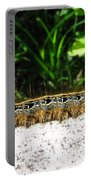 Eastern Tent Caterpillar Portable Battery Charger