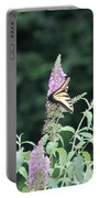 Eastern Tiger Swallowtail Butterfly -  Featured In Wildlife Group Portable Battery Charger
