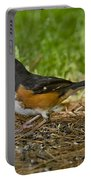 Eastern Towhee Portable Battery Charger