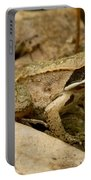 Eastern Wood Frog Portable Battery Charger