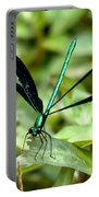 Ebony Jewelwing Portable Battery Charger