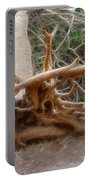 Eccentric Tree Root Growing In Ein Gedi Portable Battery Charger