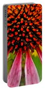 Echinacea Flower Upclose Filtered Portable Battery Charger