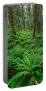 Ecola Ferns Portable Battery Charger