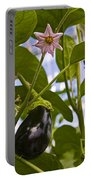 Egg Plant  Portable Battery Charger