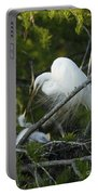 Louisiana Egret With Babies In Swamp Portable Battery Charger