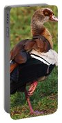 Egyptian Goose Portable Battery Charger