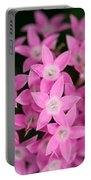 Egyptian Star Flowers Or Penta Portable Battery Charger