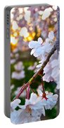 Einstein's Blossoms Portable Battery Charger