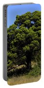 Eisenhower Park Scenic Portable Battery Charger