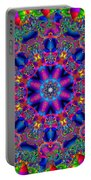 Elaborate Systems Portable Battery Charger