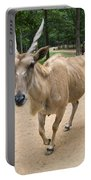 Eland Antelope Out In The Open Portable Battery Charger