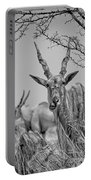Eland-black And White Portable Battery Charger