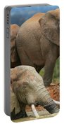 Elephant Bath Portable Battery Charger