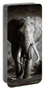 Elephant Bull Portable Battery Charger