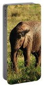 Elephant Calf Portable Battery Charger