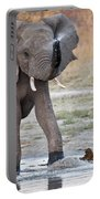 Elephant Calf Spraying Water Portable Battery Charger
