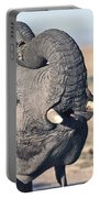 Elephant Curling Trunk Portable Battery Charger