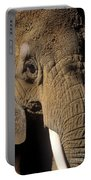 Elephant Portraint Portable Battery Charger
