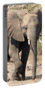 Elephant Stroll Portable Battery Charger