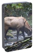 Elk Drinking Water From A Stream Portable Battery Charger