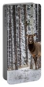 Elk In Jasper Portable Battery Charger
