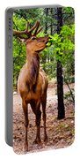 Elk - Mather Grand Canyon Portable Battery Charger