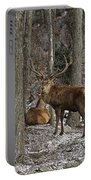 Elk Pictures 45 Portable Battery Charger