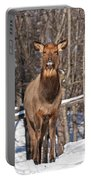Elk Pictures 50 Portable Battery Charger